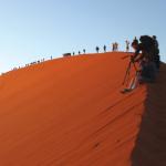 Dune Express Emerald 2019